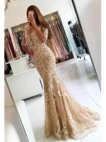 Mermaid Lace Long Prom Dress Formal Evening Dresses 99501564