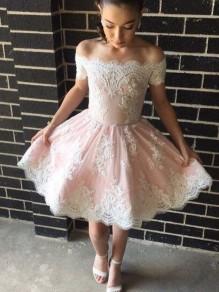 Short Lace Prom Dress Homecoming Dresses Graduation Party Dresses 99701048